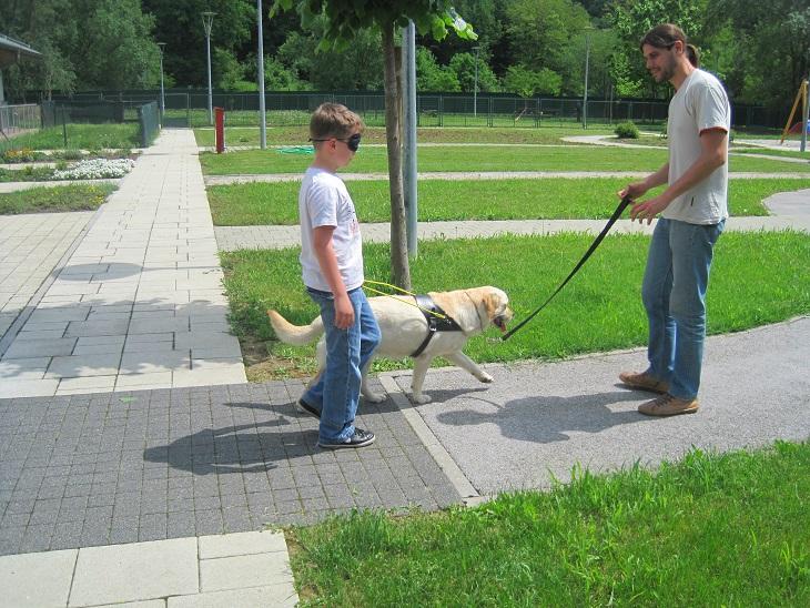 Slika dijete hoda s povezom na očima i psom