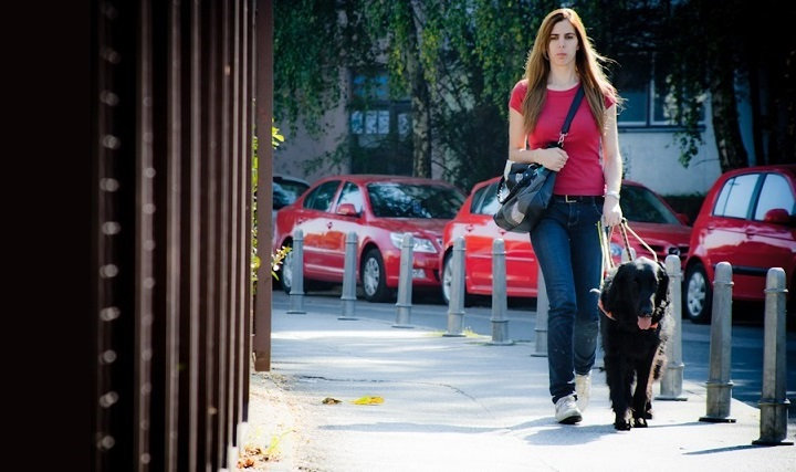 Slika slijepe djevojke sa psom vodičem na kolniku